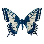 cyan_butterfly_12.jpg