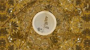 kaleidoscope _still.png