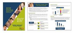 PolyOne Brochure
