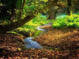 Peaceful Moments.....