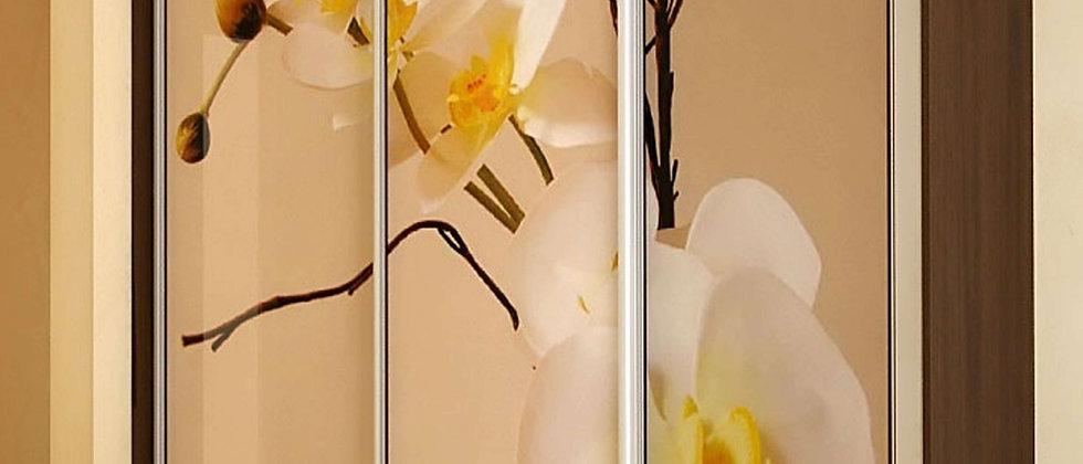 Шкаф-купе Орхидея 2