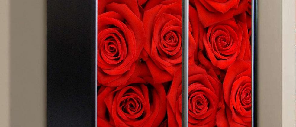 Шкаф-купе Роза 2