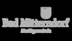 lemon website partner logos 2019 01-07.p