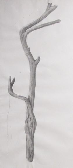 Distinguished Stick