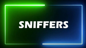 WHAT IS A SNIFFER ?