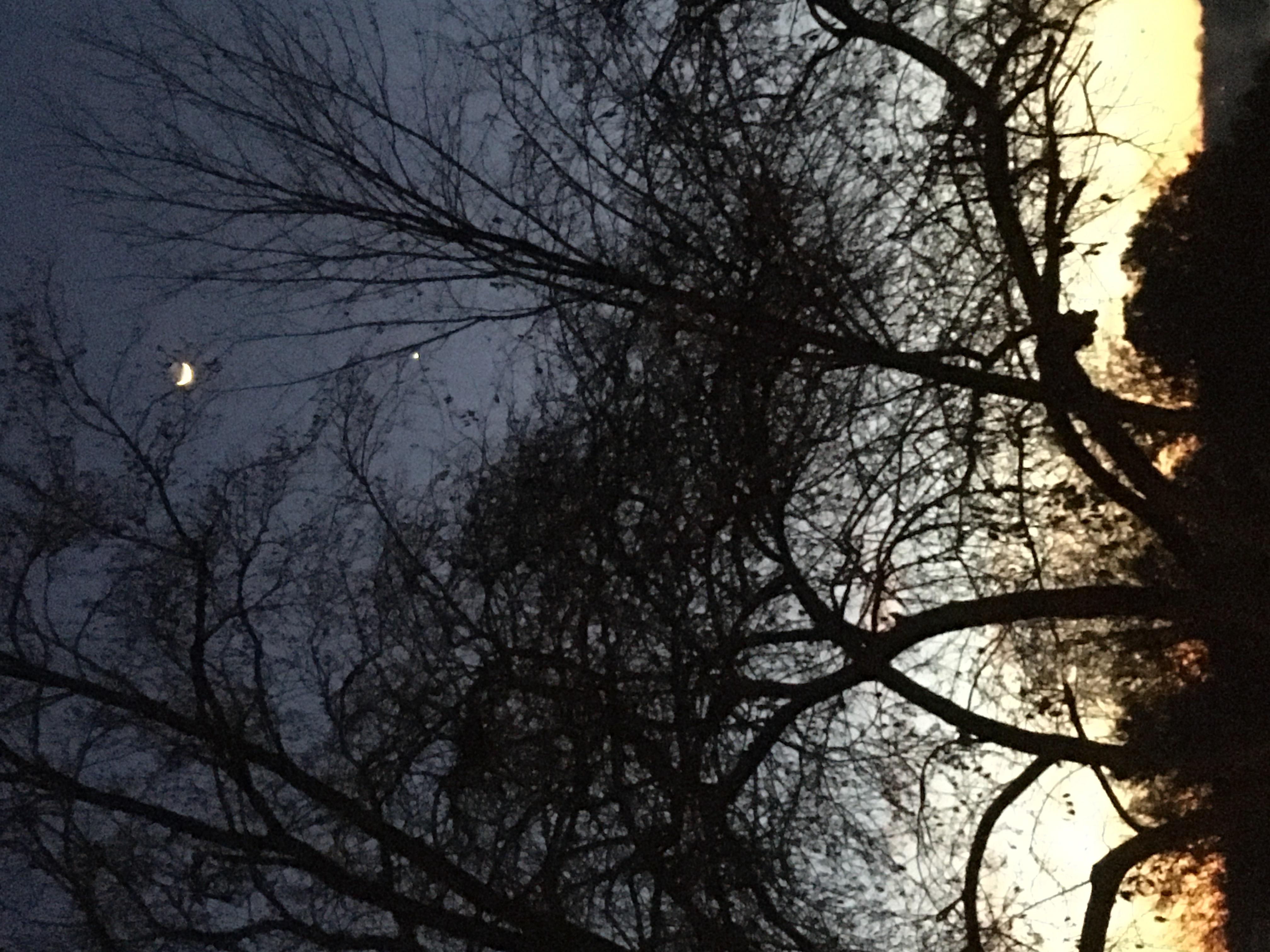 Seeing the Sky by DJWM
