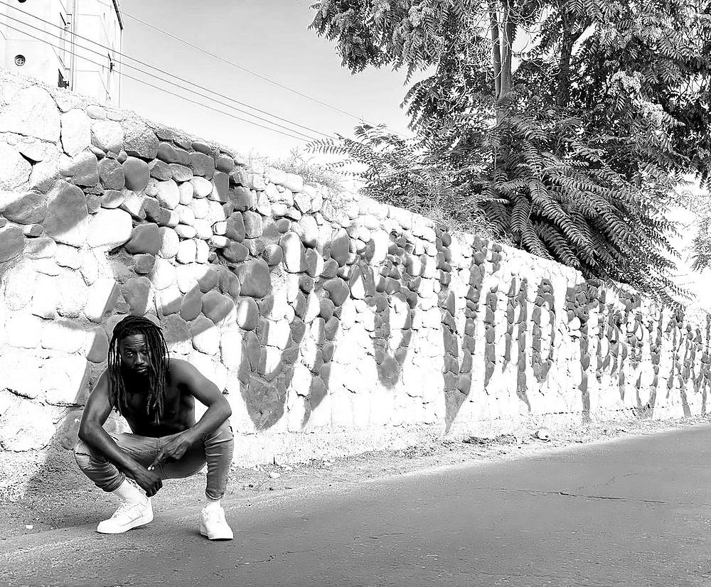 reggae music promotion