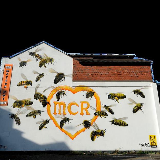 mural png.png