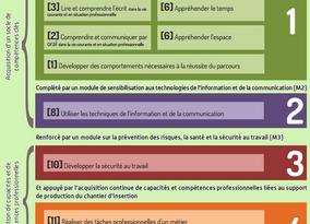 Un Certificat de Qualification Professionnel pour l'insertion à La Réunion