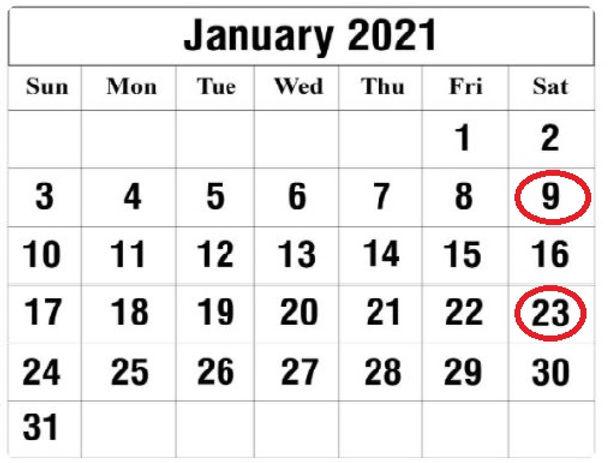 jan 2021 with dates.jpg