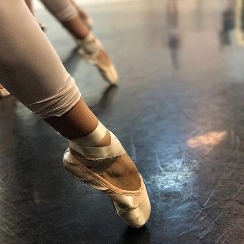 Donate to Dancer Pointe Shoe Fund