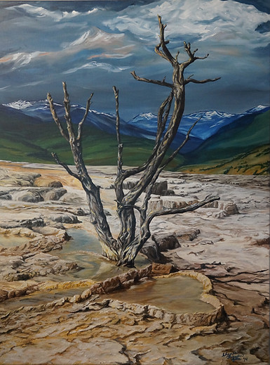 Enduring (Mammoth Hot Springs)