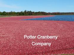 POTTER CRANBERRY COMPANY