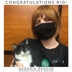 Congratulations Rio!