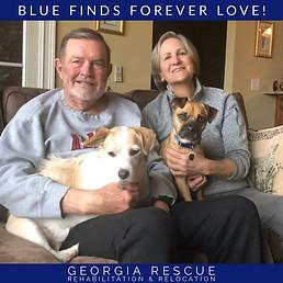 Congratulations Blue!