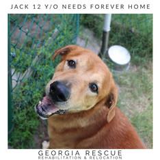 Jack 12 Y/O