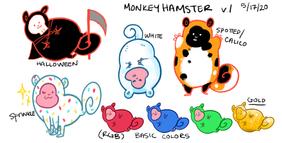 monkeyhamster.png