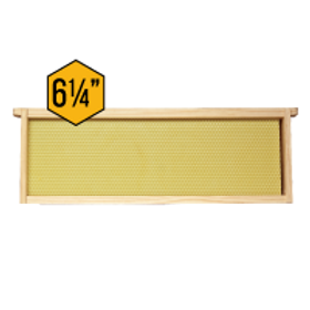 """6 1/4"""" Assembled Frames - With Natural Waxed Rite-Cell - Each"""