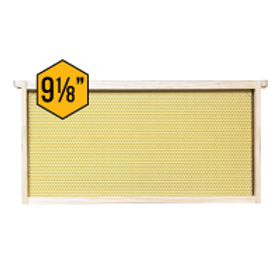 """9 1/8"""" Assembled Frames - With Natural Waxed Rite-Cell"""