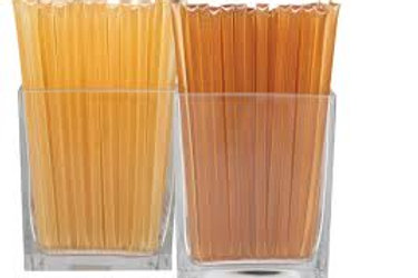 Orange Blossom Honey Sticks - 100 pack