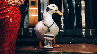 Aflac® at the Grammys®
