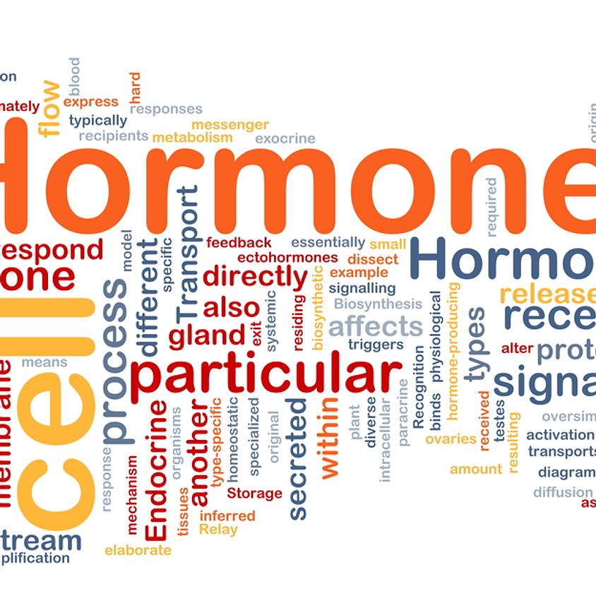 Healthy Hormone Talk