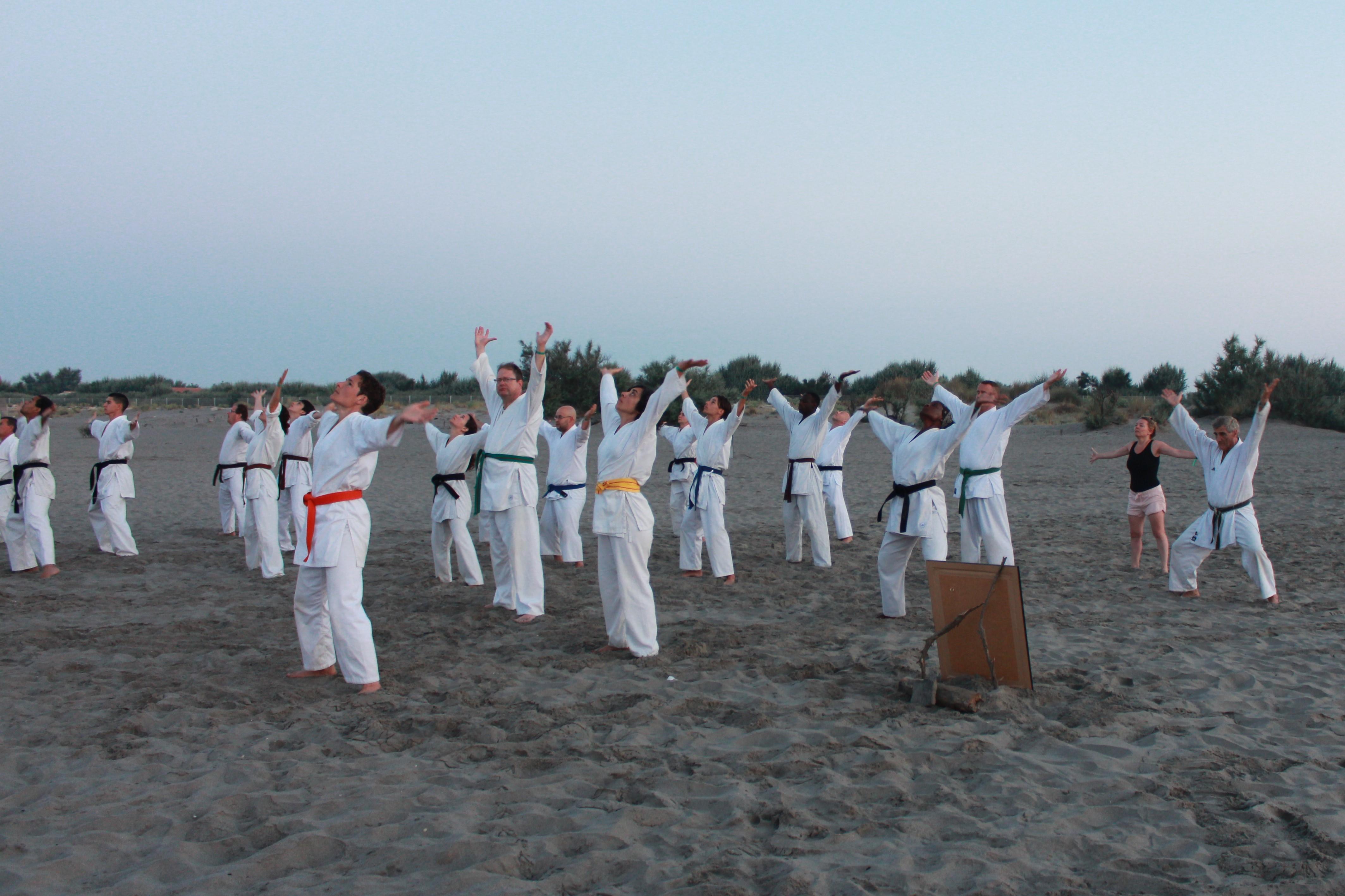 Stage d'été IKDS 2018 (17)