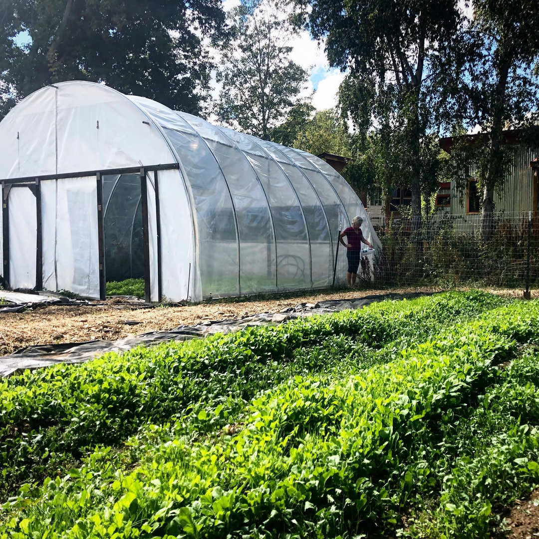 Vegetable Gardens and Hoophouses