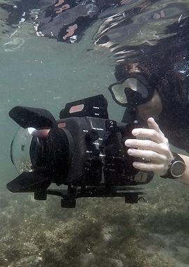 Sam Stewart Underwater Wildlife Cameraman