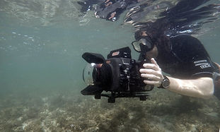 Sam Stewart Wildlife Cameraman Cameraman Sea