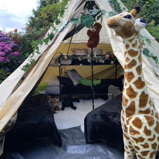Jungle Safari Theme (outdoor)