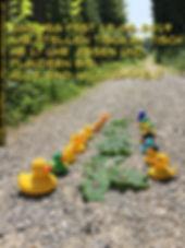 eggweg19 .jpg