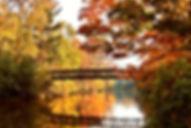 bridge in Williamston.jpg