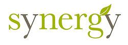 Synergy Enterprises logo