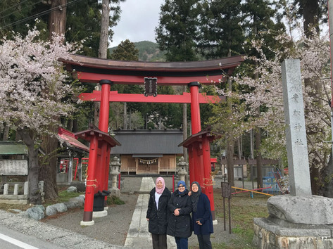 Kyoto Musim Bunga