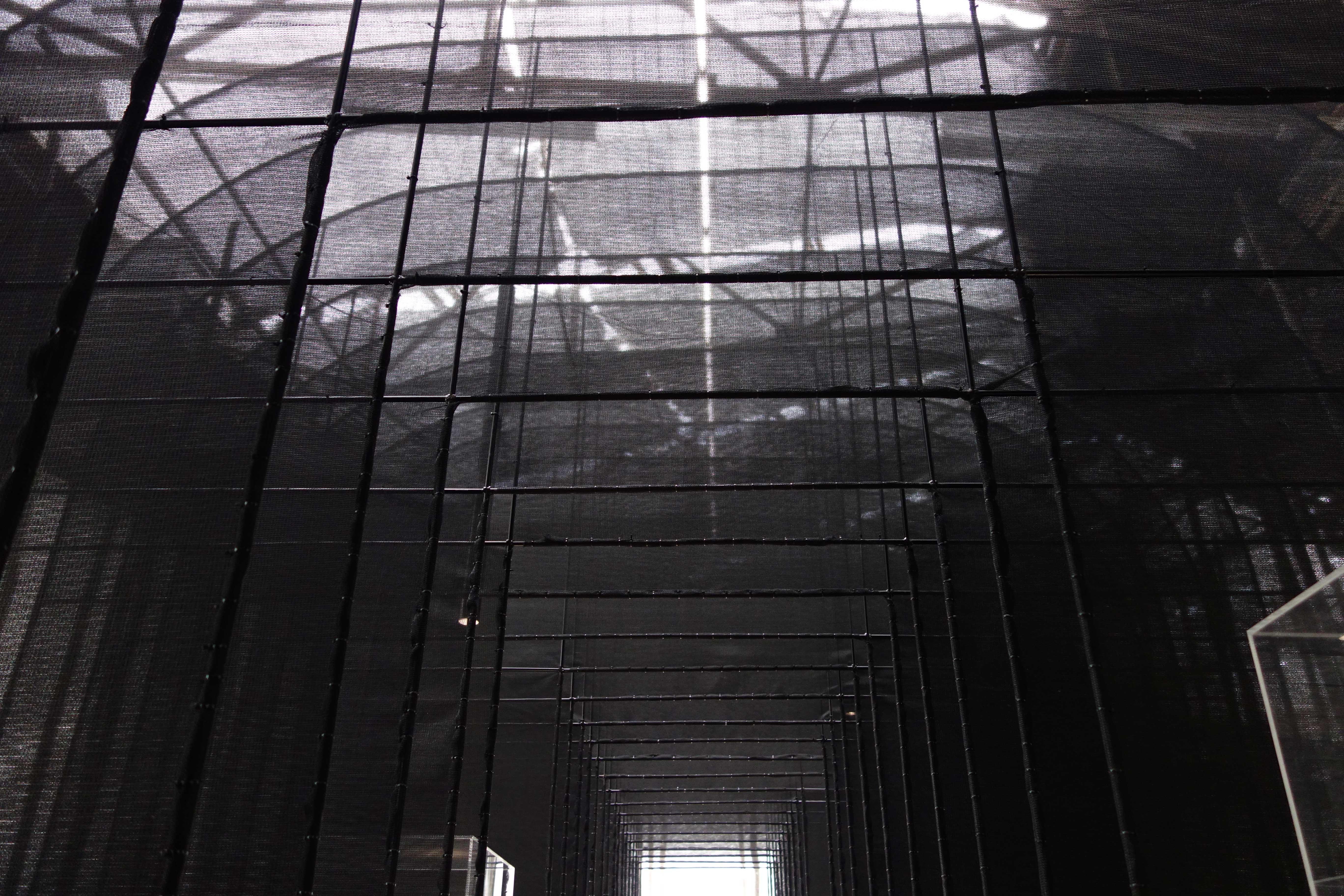 NOUVELLE VAGUES, Palais de Tokyo