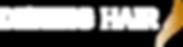 Logo DENING HAIR 2016 NEG sRGB.png