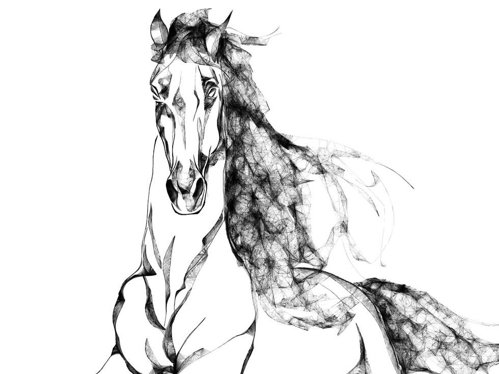 Line Horse