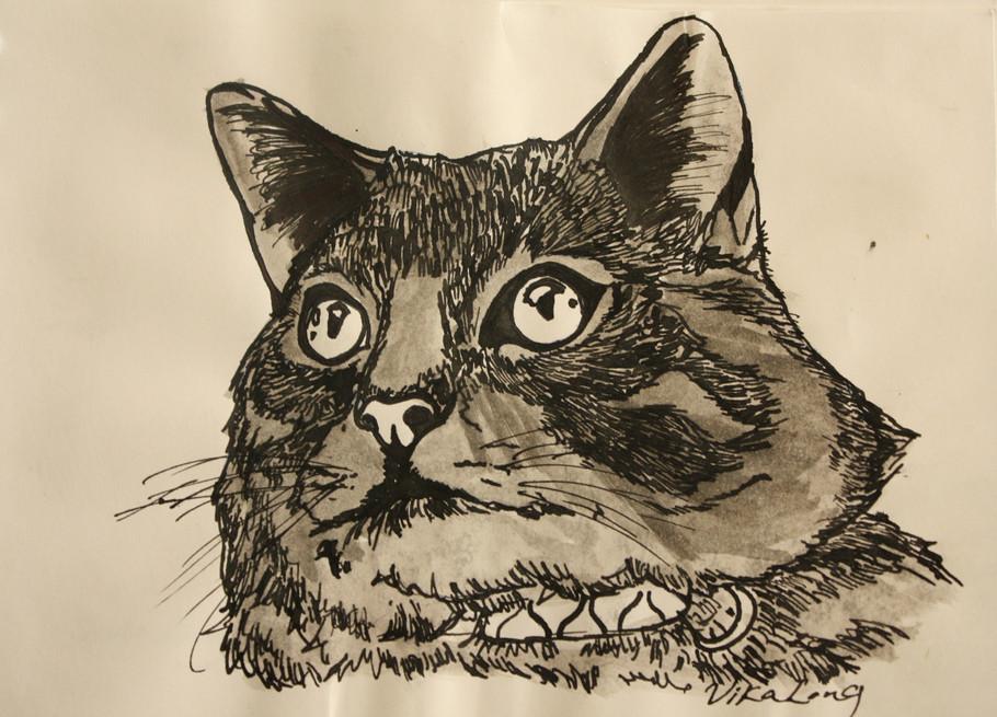 Cat Inkwash.JPG