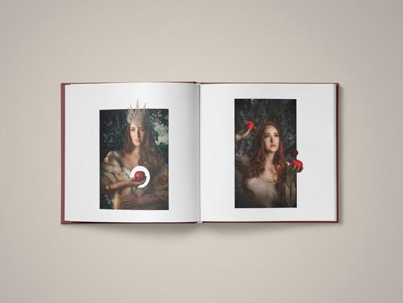 Fairytales Reimagined Series