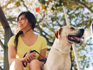 Helping Your Hound Beat the Dog Days of Summer