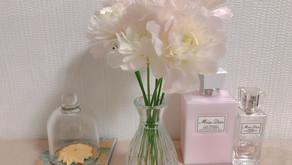 ラナンキュラス(Ranunculus花言葉:とても魅力的)