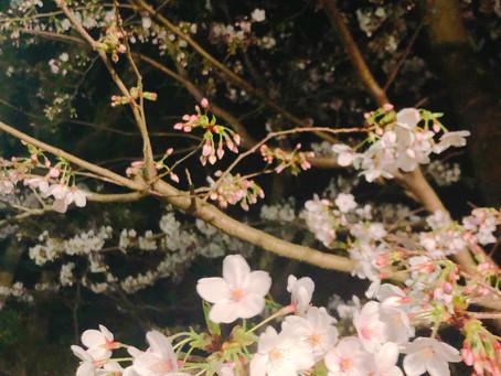 4月30日(木)香りの1ページ「大和の香りを感じる」