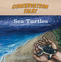 SeaTurtles_Cover_.jpg