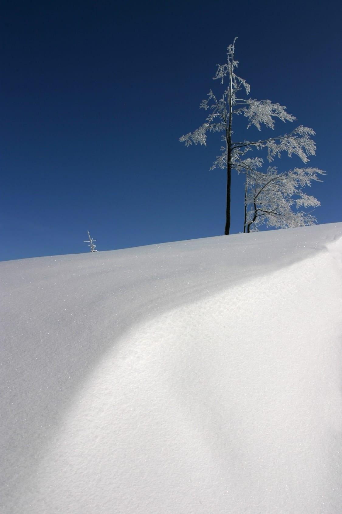 Juste après une chute de neige