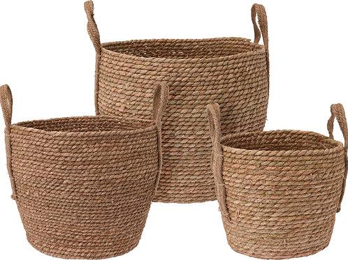 Milo Basket