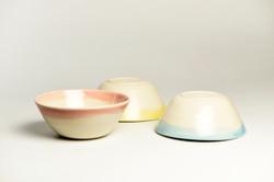 Jidori Donburi Bowl