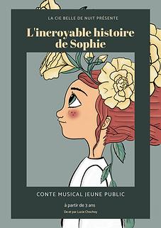 Affiche incroyable histoire de Sophie .png