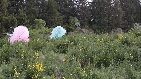 installation, louise porte, artiste, art contemporain, vidéo
