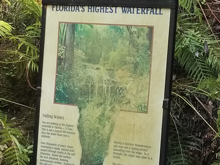 A day by Florida's highest waterfall